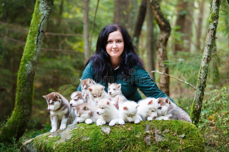 Criador de perros con sus animales domésticos fotografía de archivo libre de regalías