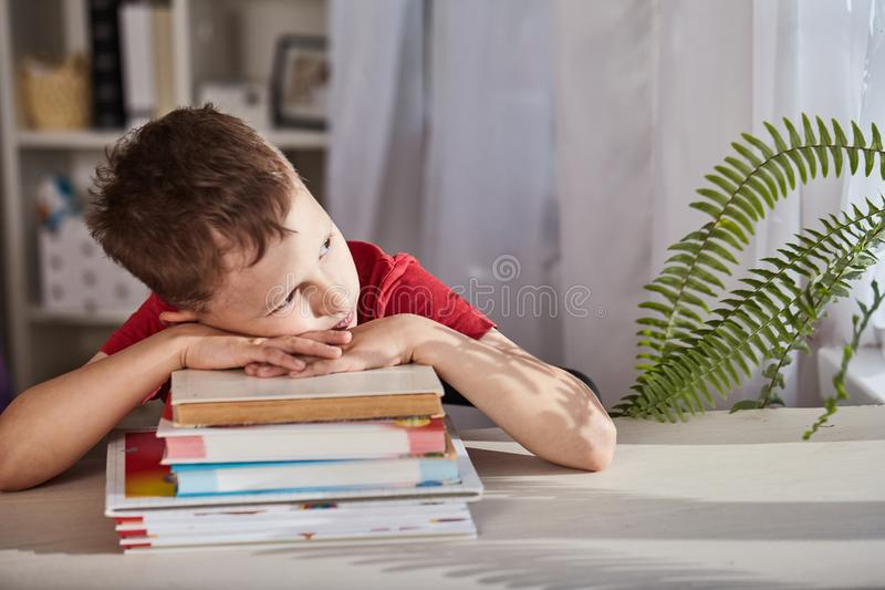 A criança é confundida de seus estudos e olha para fora a janela o menino olha sonhadoramente na distância estudante do rapaz peq fotografia de stock