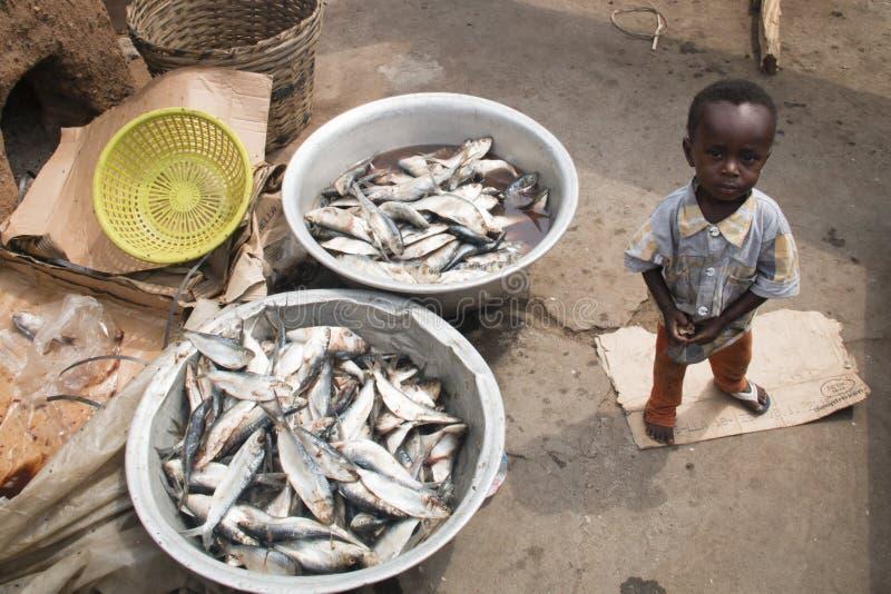 Criança africana com as duas cestas dos peixes em Accra, Gana imagem de stock