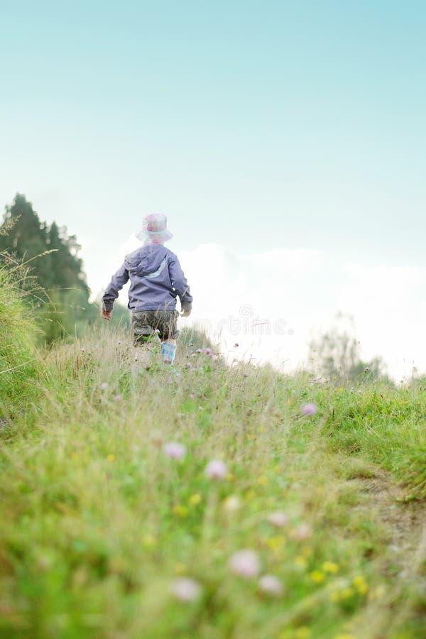 Criança alegre em um prado verde imagem de stock royalty free