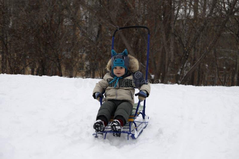 criança alegre que sledding da montanha em um chapéu do cavalo fotos de stock royalty free