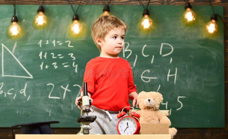 Criança, aluno na cara calma perto do microscópio Primeiro interessado anterior no estudo, aprendendo, educação Aluno entusiástic fotos de stock royalty free