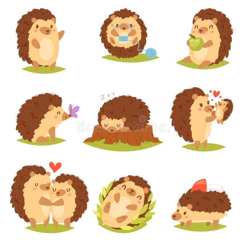Criança animal espinhosa do caráter dos desenhos animados do vetor do ouriço com coração do amor no grupo da ilustração dos anima ilustração stock