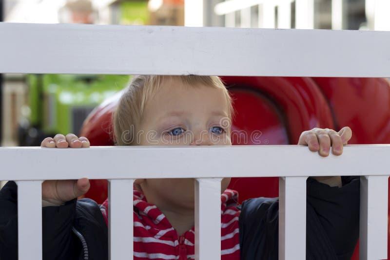 Criança bonito que olha fora do cerco fechado do fio outdoors fotografia de stock royalty free