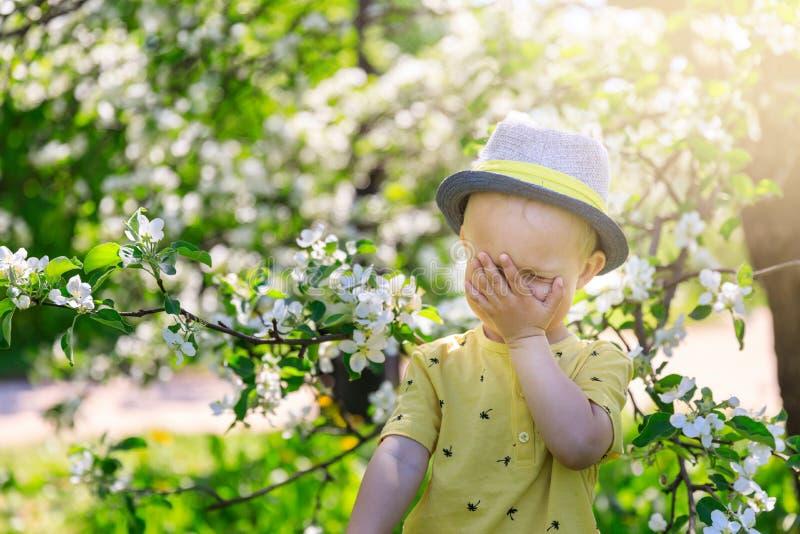 Criança bonito, risos boybaby do bebê que cobrem sua cara com sua mão no jardim de florescência, primavera fotografia de stock