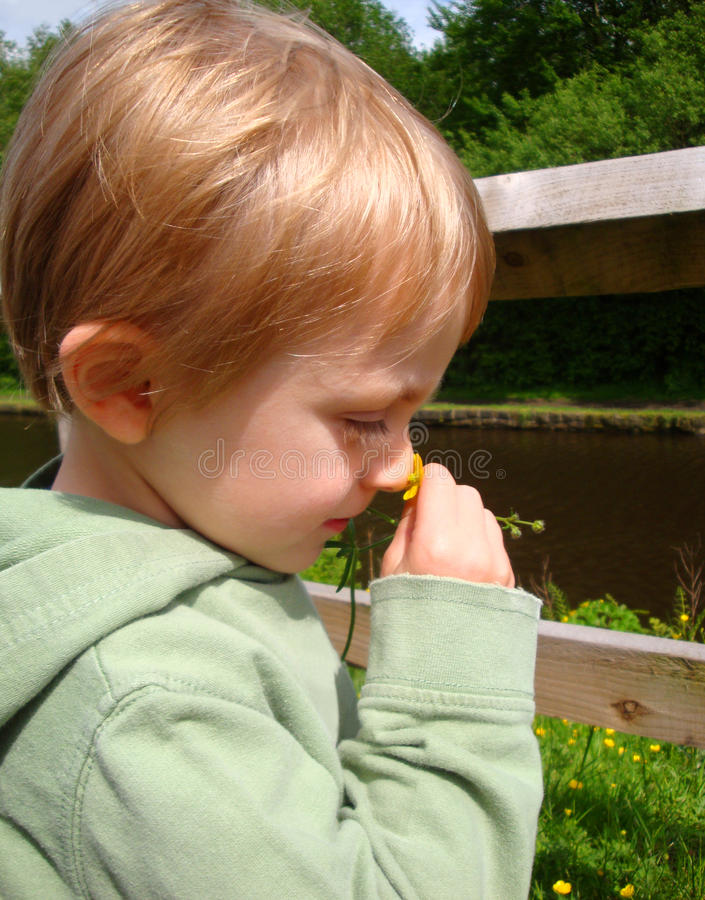 Criança com botão de ouro imagem de stock
