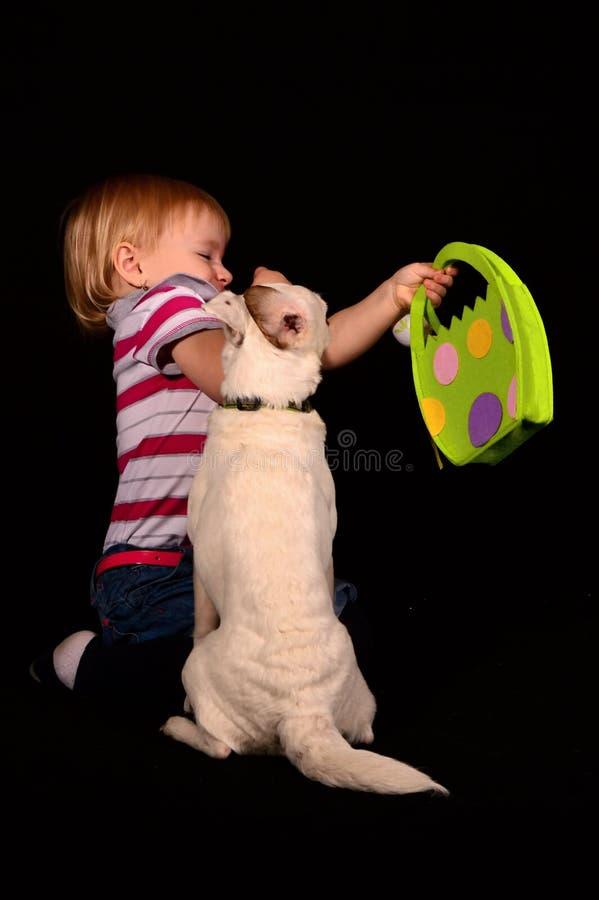 Criança com cão fotos de stock royalty free