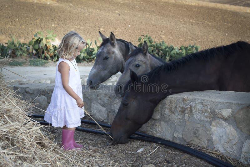Criança com cavalos fotografia de stock