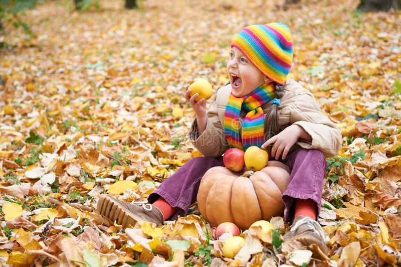 A criança come a maçã e a abóbora na floresta, senta-se nas folhas de outono fundo, outono foto de stock