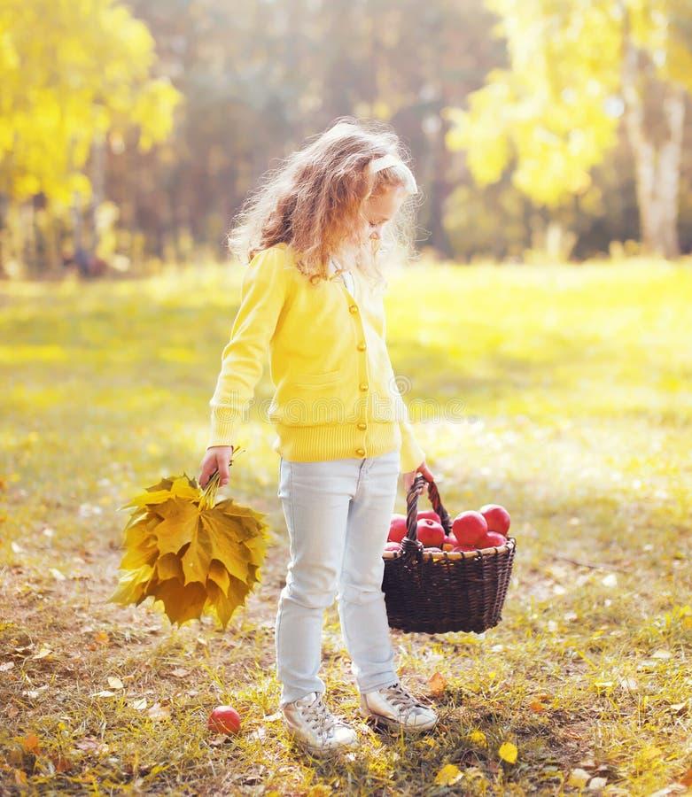 Criança da menina com as folhas e a cesta amarelas de bordo fotos de stock royalty free