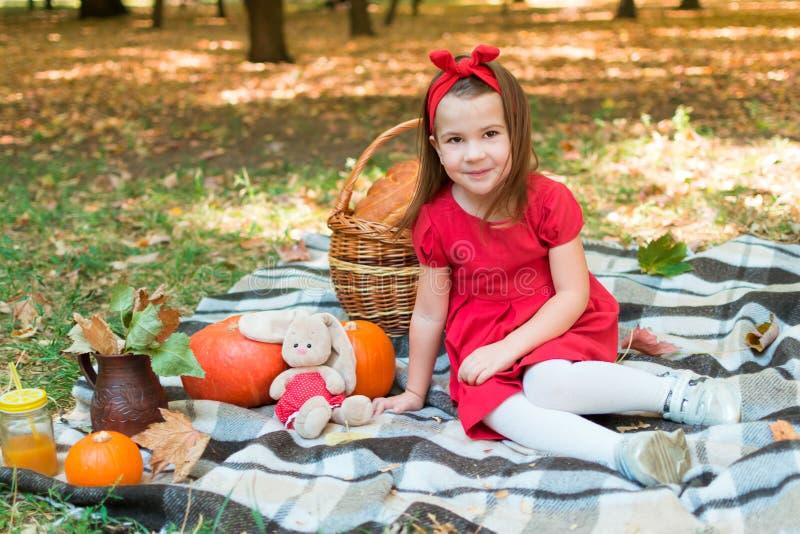 Criança da menina em um vestido vermelho, guardando uma abóbora, sorrindo piquenique do outono no parque na cesta da manta Hallow fotografia de stock royalty free