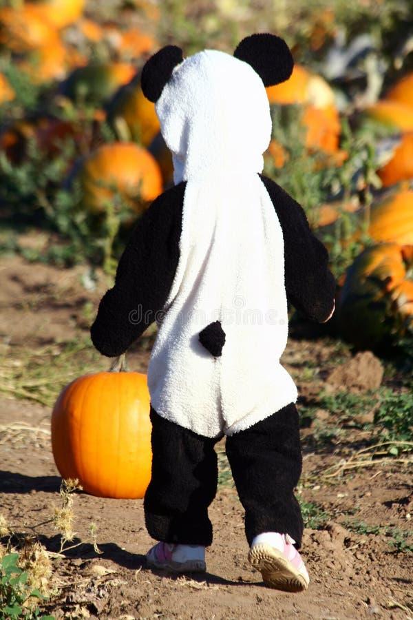 Criança de Halloween fotografia de stock royalty free