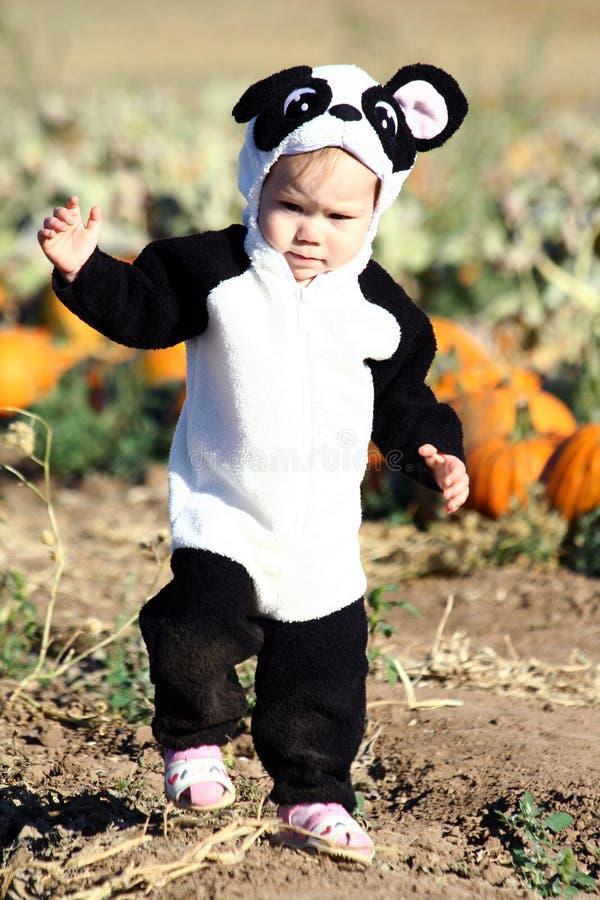 Criança de Halloween fotografia de stock