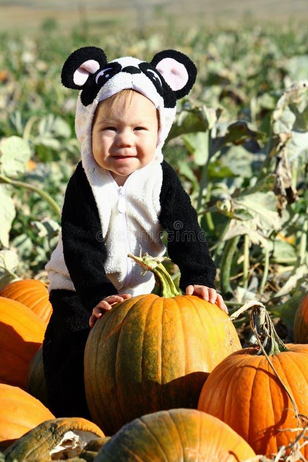 Criança de Halloween fotos de stock