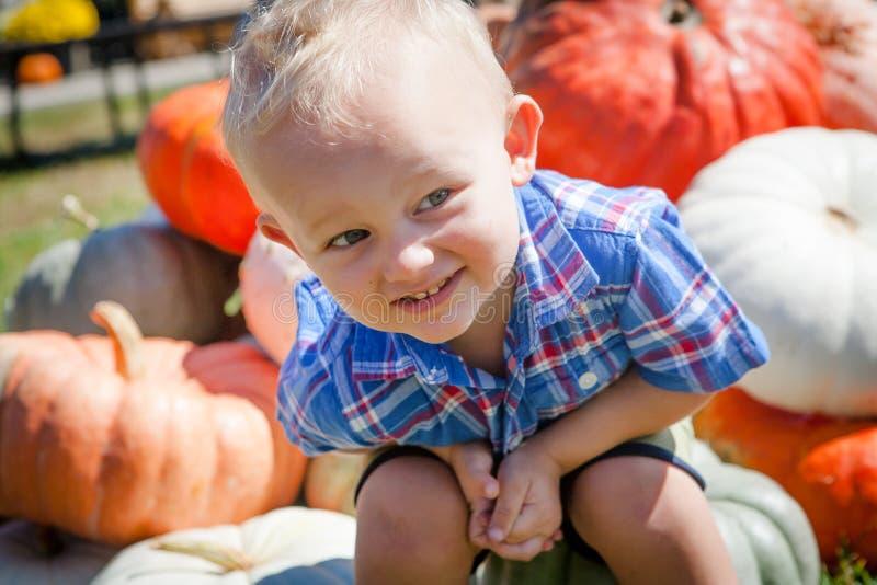Criança de sorriso que senta-se em uma pilha das abóboras imagens de stock royalty free