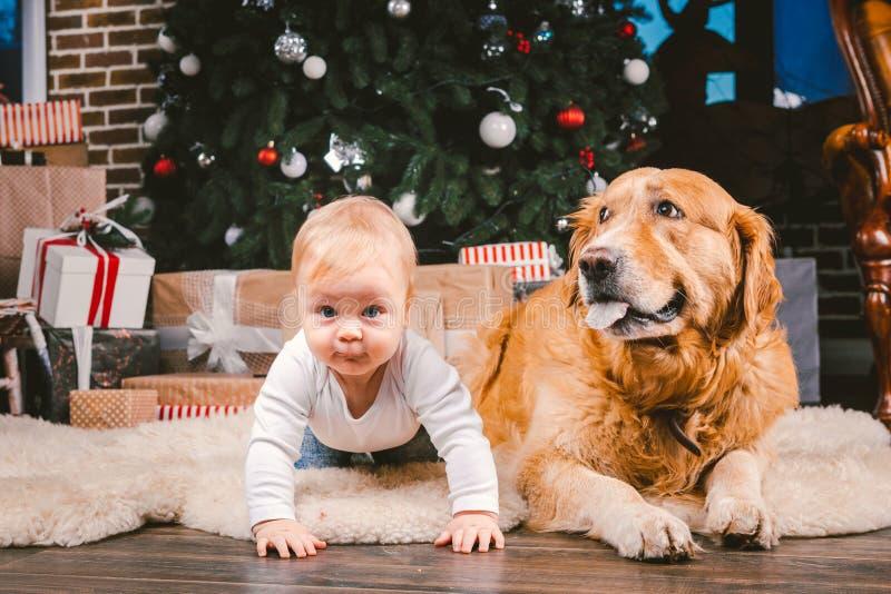 Criança do homem da amizade e animal de estimação do cão Feriados de inverno do ano novo do Natal do tema Bebê na árvore decorada imagens de stock
