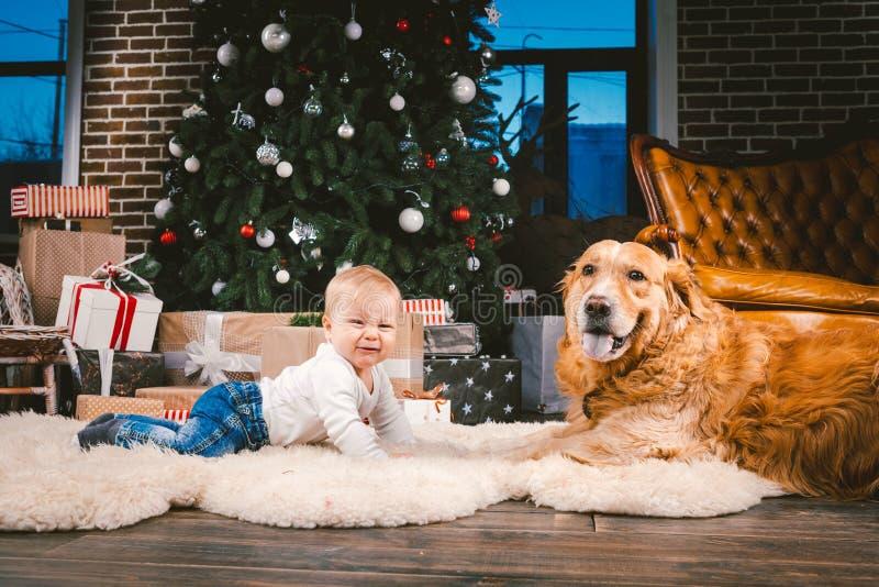 Criança do homem da amizade e animal de estimação do cão Feriados de inverno do ano novo do Natal do tema Bebê na árvore decorada fotografia de stock