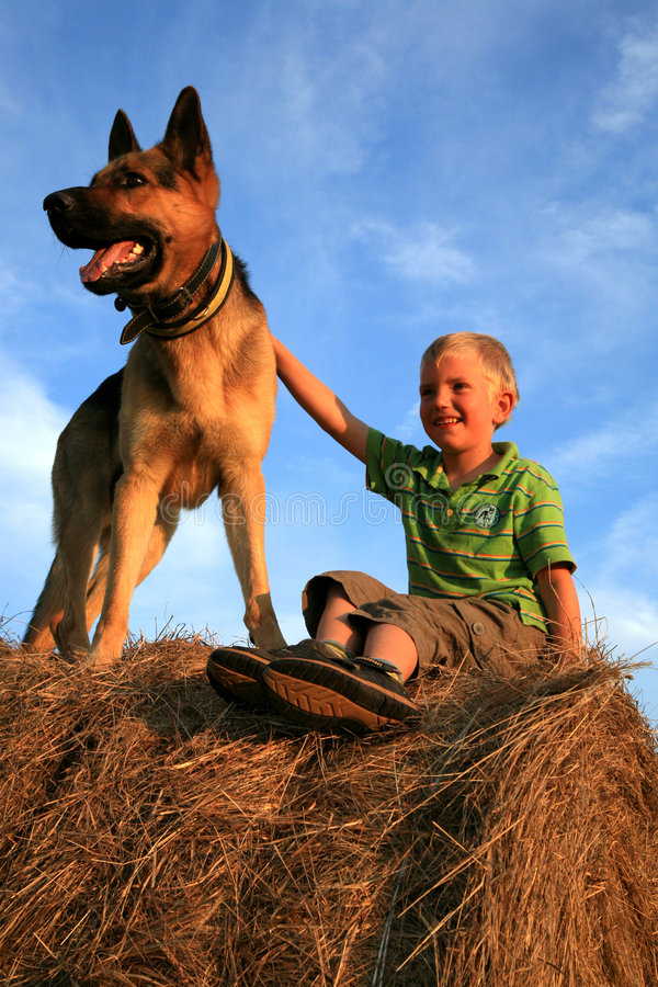 Criança e cão imagens de stock