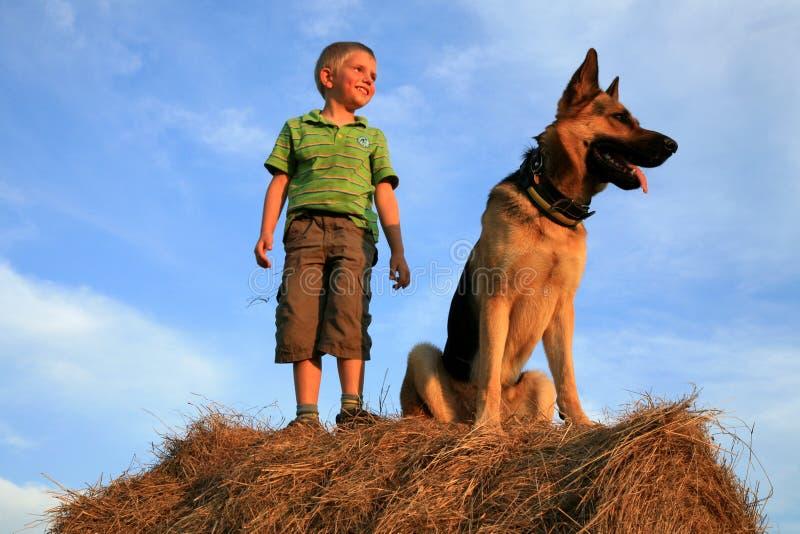 Criança e cão imagens de stock royalty free