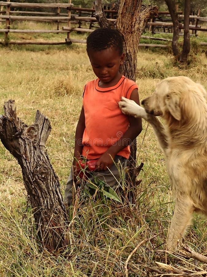 Criança e cão africanos fotografia de stock royalty free