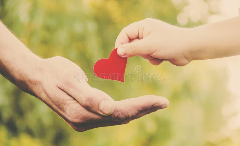 A criança e o pai têm um coração em suas mãos fotografia de stock royalty free