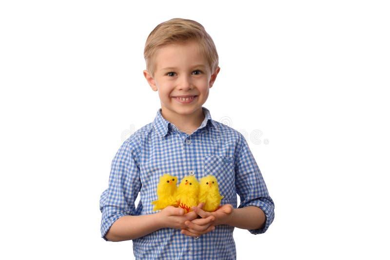 Criança e Páscoa O menino louro de sorriso, 6 anos velho, está guardando galinhas amarelas fotografia de stock
