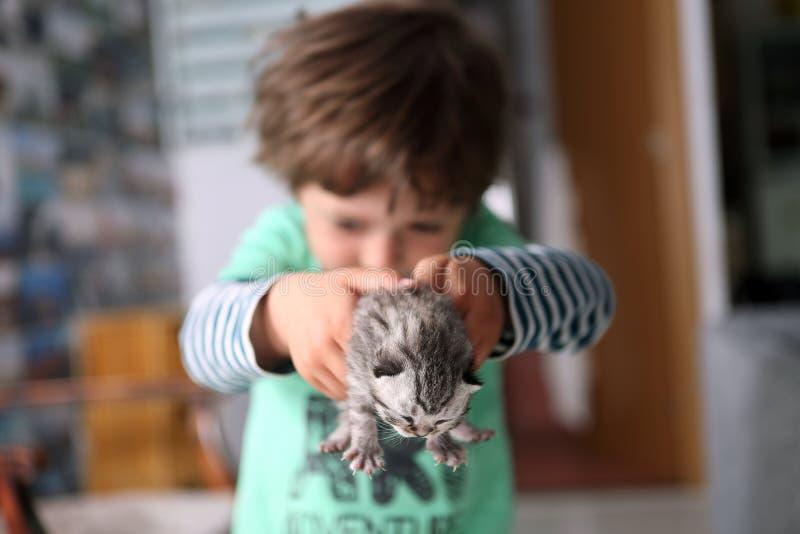 Criança e um gatinho do bebê fotografia de stock