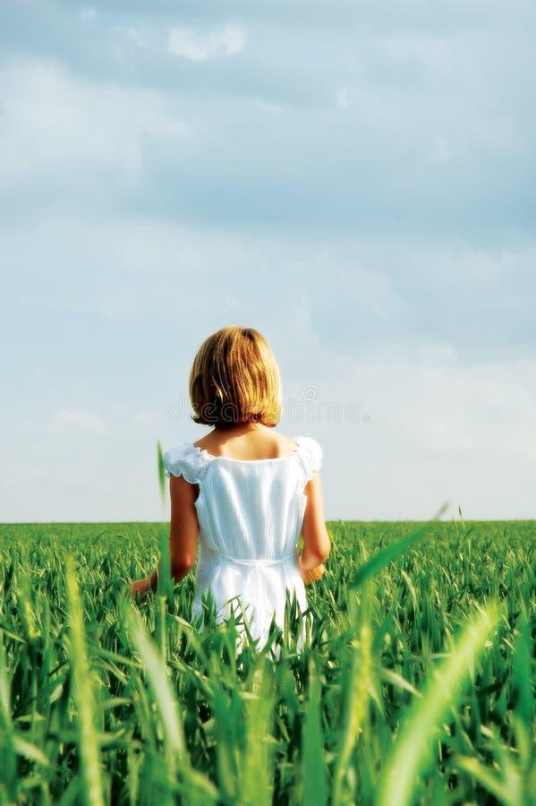 Criança em um campo de trigo imagens de stock royalty free
