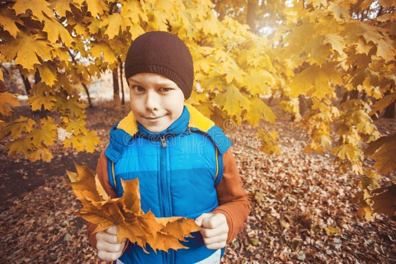 Criança engraçada em um fundo de árvores do outono fotos de stock royalty free
