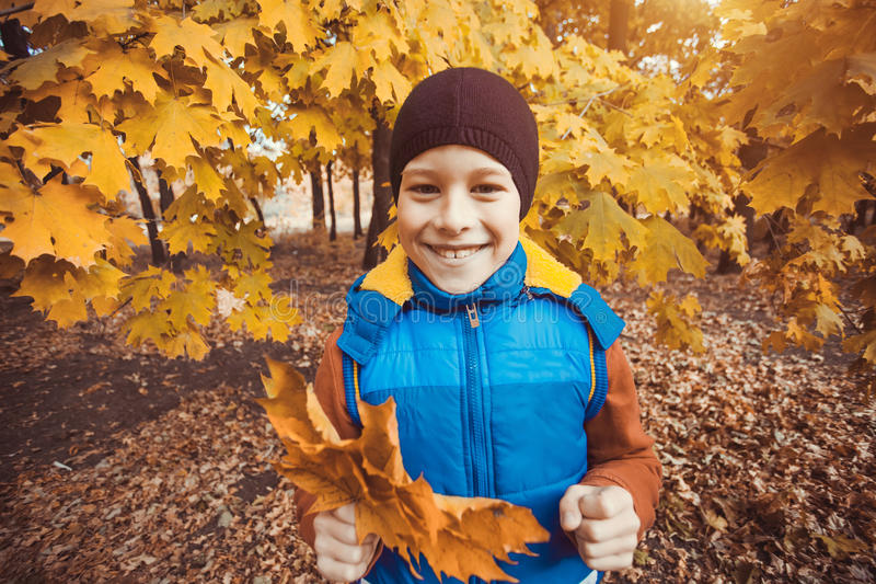 Criança engraçada em um fundo de árvores do outono imagens de stock royalty free