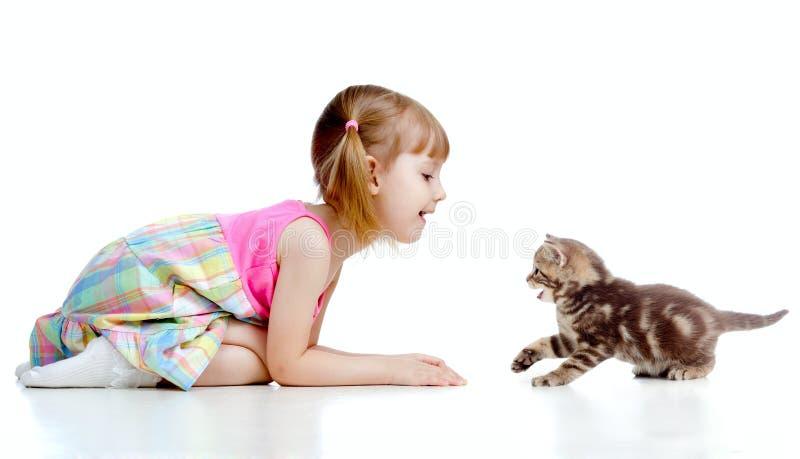Criança engraçada que joga com gatinho escocês imagens de stock royalty free