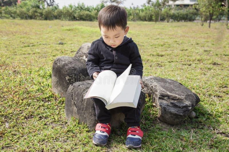 Criança esperta que lê um livro no parque imagens de stock