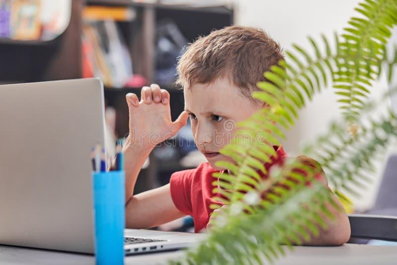 A criança está procurando a informação no Internet através de um portátil auto-estudo em casa, fazendo trabalhos de casa Atentame imagens de stock