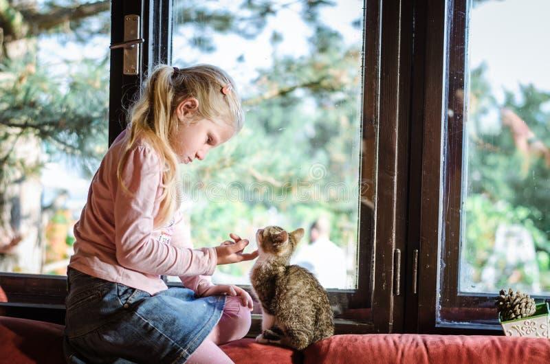 Criança feliz com gato foto de stock royalty free