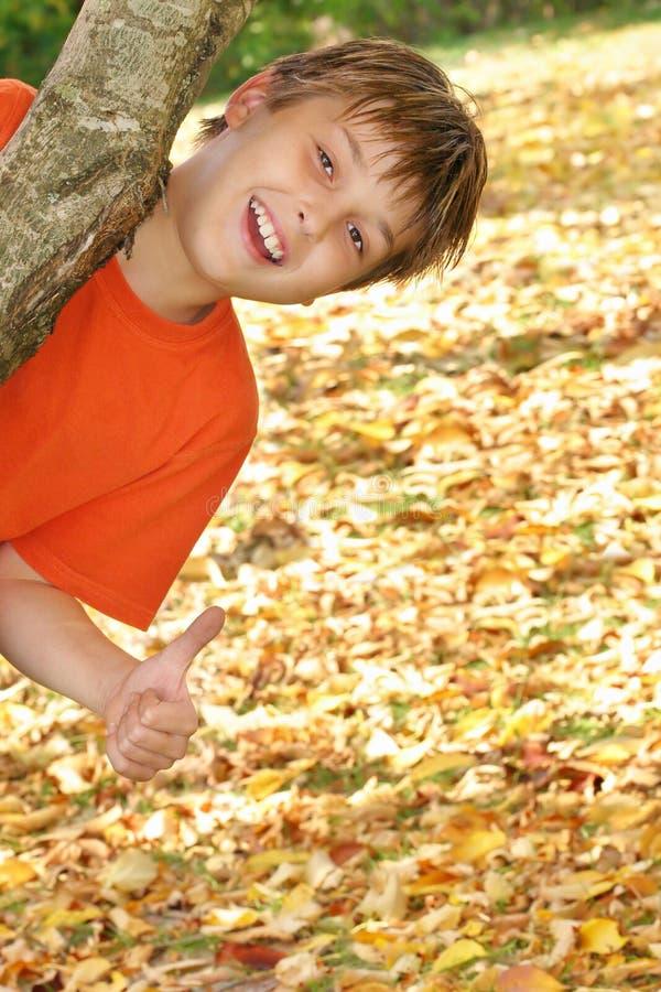 Criança feliz nas folhas de outono imagens de stock