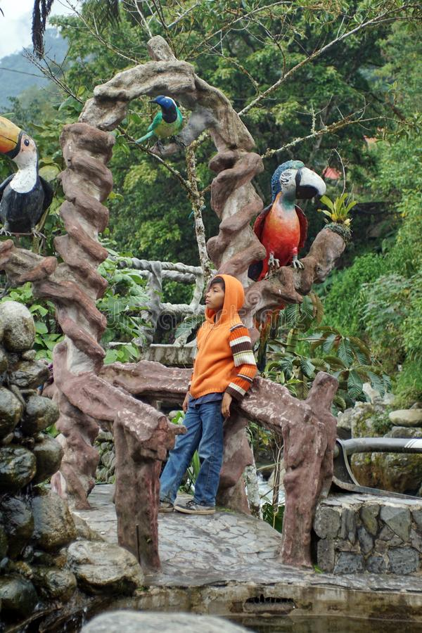 Criança local em uma ponte concreta em um parque imagem de stock