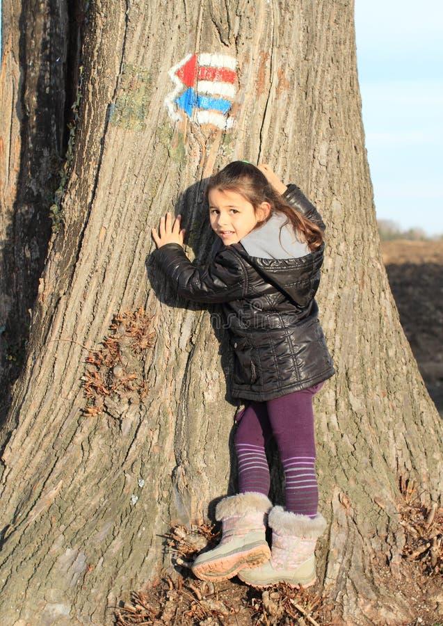 Criança - menina que toca em um tronco foto de stock royalty free