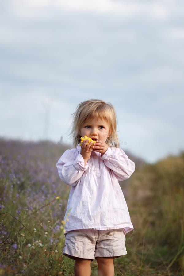 Criança, milho imagens de stock