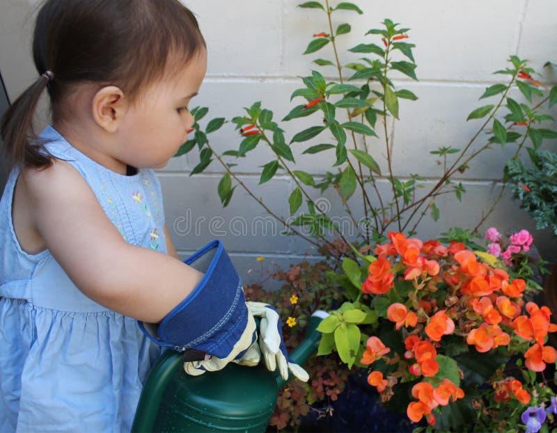 A criança molha um jardim imagens de stock