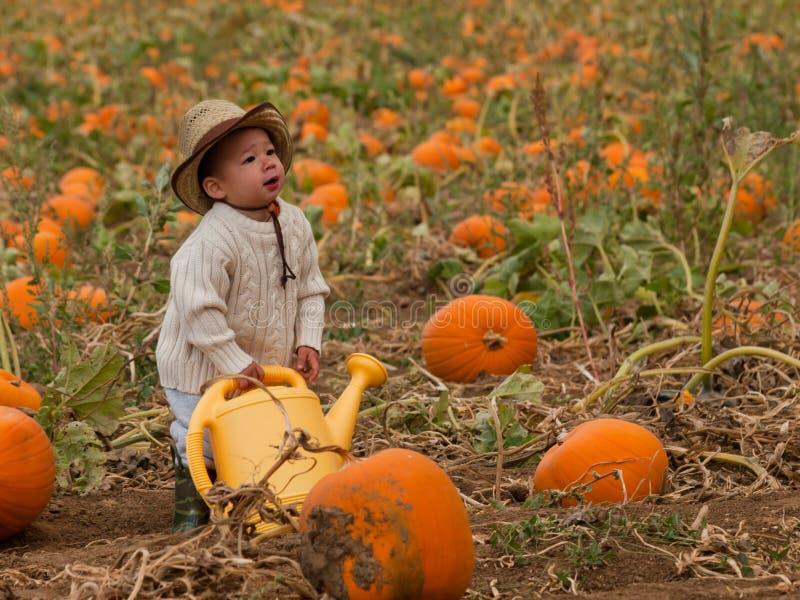 Criança na exploração agrícola imagem de stock