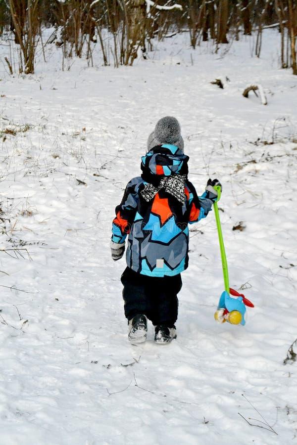 A criança na madeira fria do inverno com um brinquedo imagens de stock royalty free