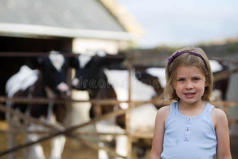 Criança nova com vacas do bebê imagem de stock royalty free