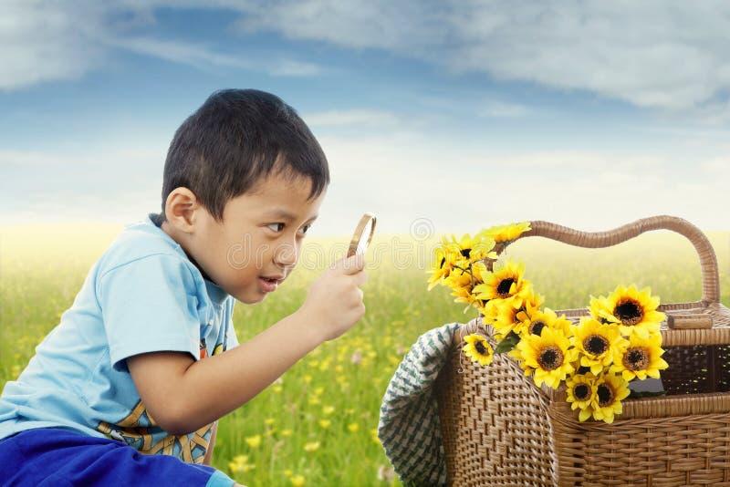A criança observa flores com lupa fotos de stock
