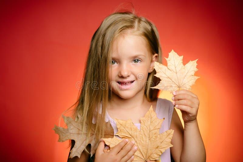 A criança pequena aprecia a infância do outono Autumn Clothing e tendências da cor Alegrias da infância Jogo feliz dos miúdos out imagens de stock