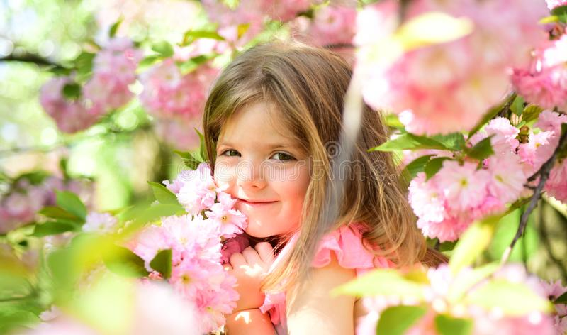 Criança pequena Beleza natural O dia das crianças primavera menina da previsão de tempo na mola ensolarada Menina do verão fotografia de stock