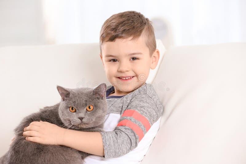 Criança pequena bonito com gato fotografia de stock