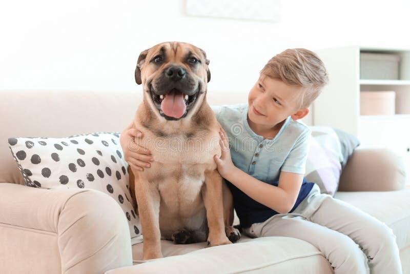 Criança pequena bonito com seu cão no sofá foto de stock