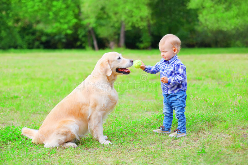 A criança pequena com cão de labrador retriever está jogando junto com uma bola no parque do verão imagens de stock royalty free