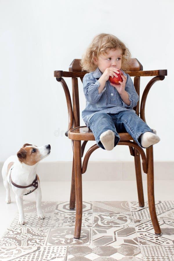 A criança pequena come a maçã na vista do estúdio e do cão fotografia de stock
