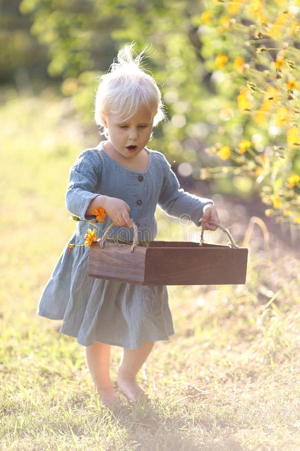 Criança pequena da criança que anda através das flores da colheita do jardim imagens de stock royalty free